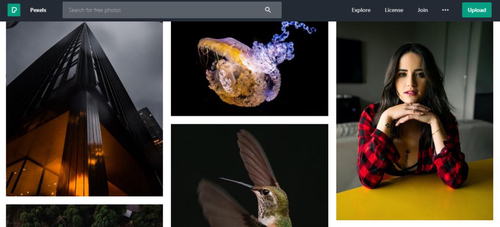 pexels banco imagens gratis